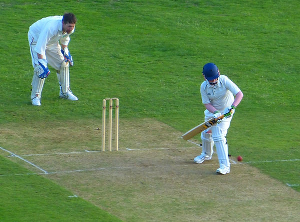 Cricket hobby