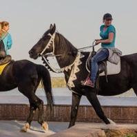 equestrianism.jpg