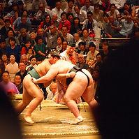 sumo wrestling.jpg
