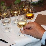 Spirits liquor tasting.jpg