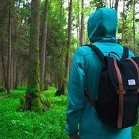 jungle hiking.jpg
