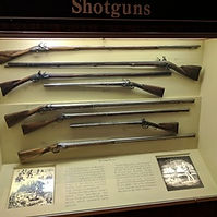 Guns Collecting.jpg