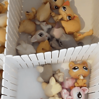 LPS collecting.png