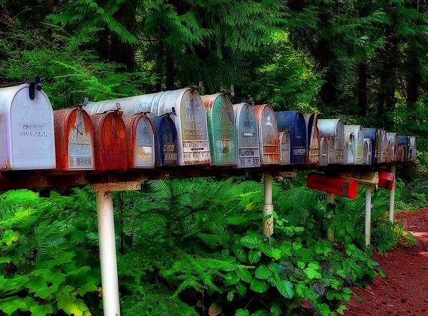 letterbox.webp