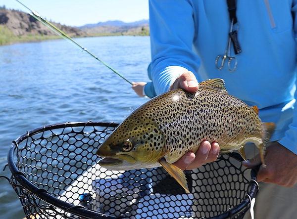 Fishing hobby