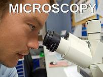 microscopy new.jpg