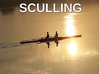 sculling.jpg