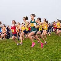 Cross country running.jpg