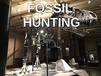 fossil hunting.jpg