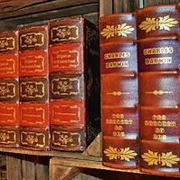 Leather bound books collection.jpg