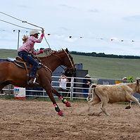 calf roping (2).jpg