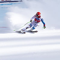 Alpine skiing.jpg