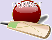 cricket 1.png