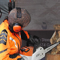 chainsaw carving.jpg