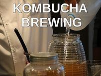 Kombucha brewing.jpg