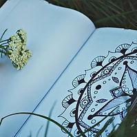 Nature diary.jpg