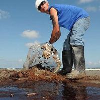 Ocean cleanup.jpg