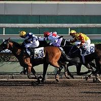 Horseracing.jpg