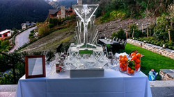 Private party, Ice Sculpture, birthday party, Touch of Spice, Event company, Queenstown Hill, Privat
