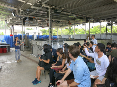 Visiting Lau Fau Shan's Oyster Depuration Centre (HKOCEA)