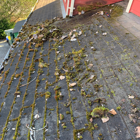 Roof Cleaning Before.jpeg