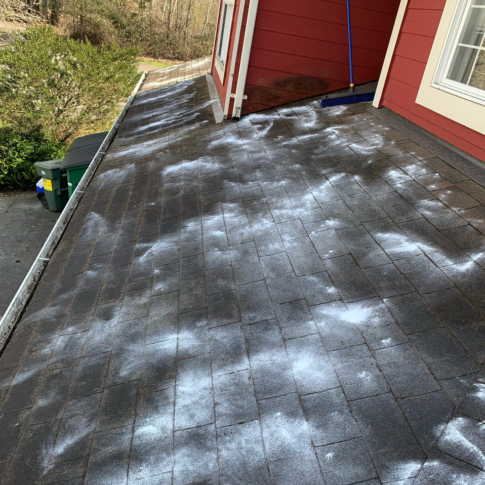 Roof Cleaning After.jpeg