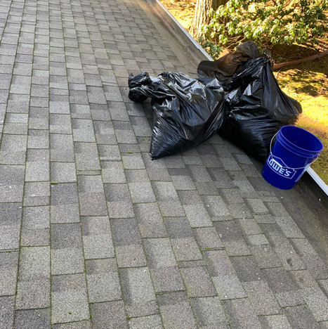 Roof Cleaning.jpeg