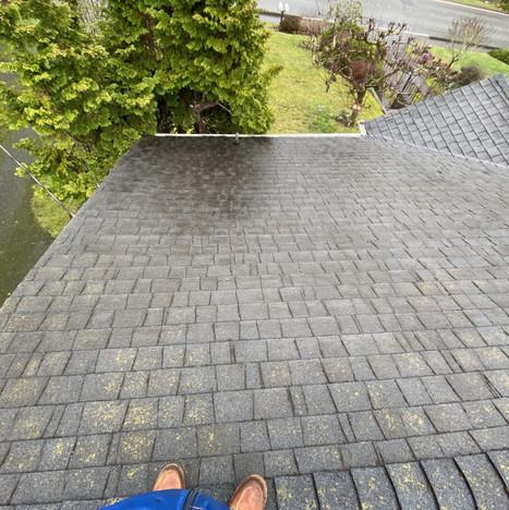 Roof Cleaning Bellingham WA.jpg