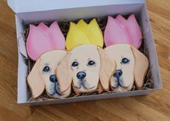 'Rosie' Handpainted Royal Iced cookies