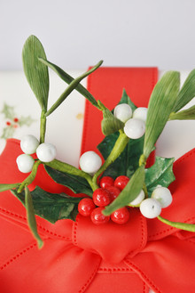 Mistletoe & Holly cake