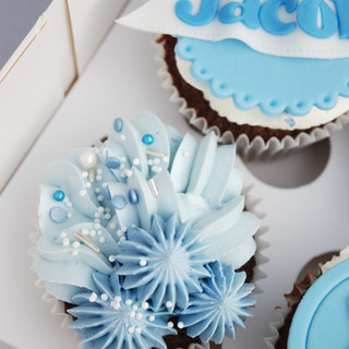 First Birthday Cupcakes (9)-2.jpg