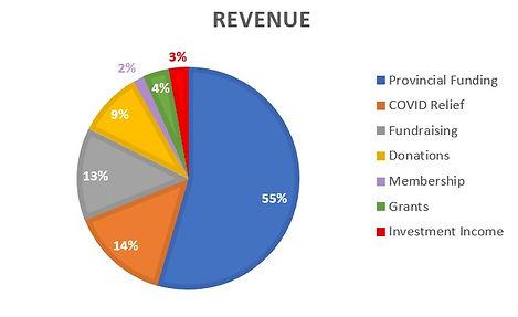 Graph revenue .jpg