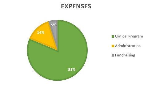 Graph expenses .jpg