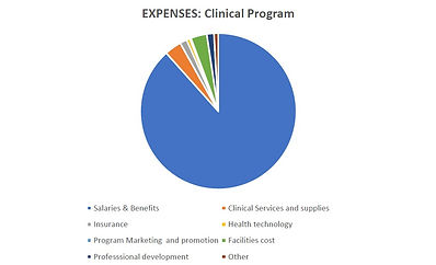 Clinical expenses pie chart .jpg