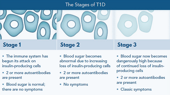 2020 Stages of T1D .png