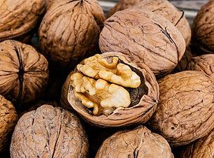 nuts-4637557_1280.jpg