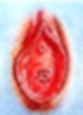 Hymen cribriformis.jpg