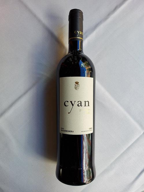Cyan Prestigio 2005