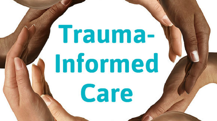 Trauma Informed Care for Professionals