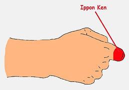 Ippon Ken