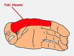 Yubi Hasami