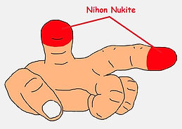 Nihon Nukite