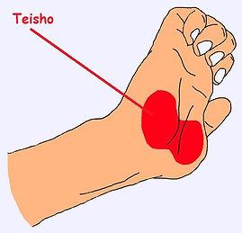 Teisho