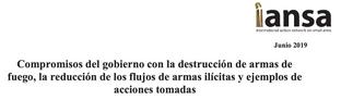 Compromisos del gobierno con la destrucción de armas de fuego, la reducción de los flujos de armas ilícitas y ejemplos de acciones tomadas
