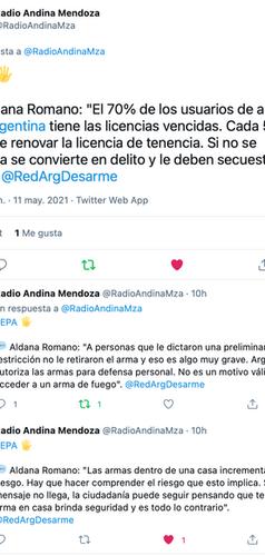 Aldana Romano, Directora Ejecutiva de INECIP, Miembro de la Red Argentina para el Desarme