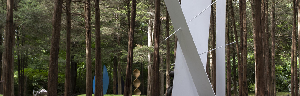 Sculpture: Planes and Lines