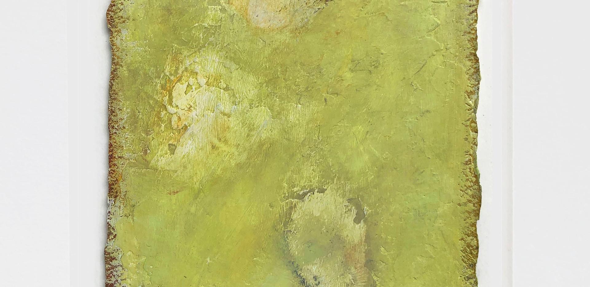 Marc Zaref_Tide pool study_color_05.jpg