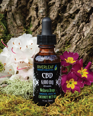 CBD-Wellness-6000.png