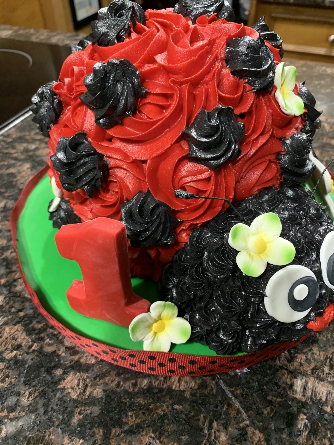 1st Birthday Lady Bug