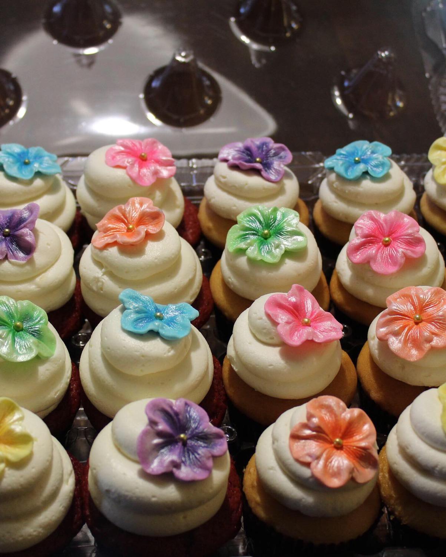 Tropical Botanical Cupcakes